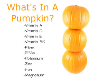 What's In A Pumpkin?